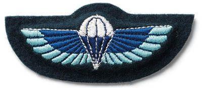 C (Rhodesia) Squadron 22 SAS Regiment
